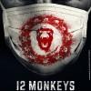 [Avis] 12 Monkeys